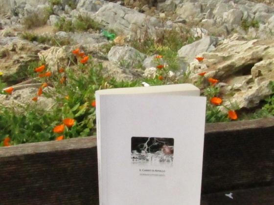 Versione cartacea del romanzo di Patrizia Grotta, Il Carro di Apollo